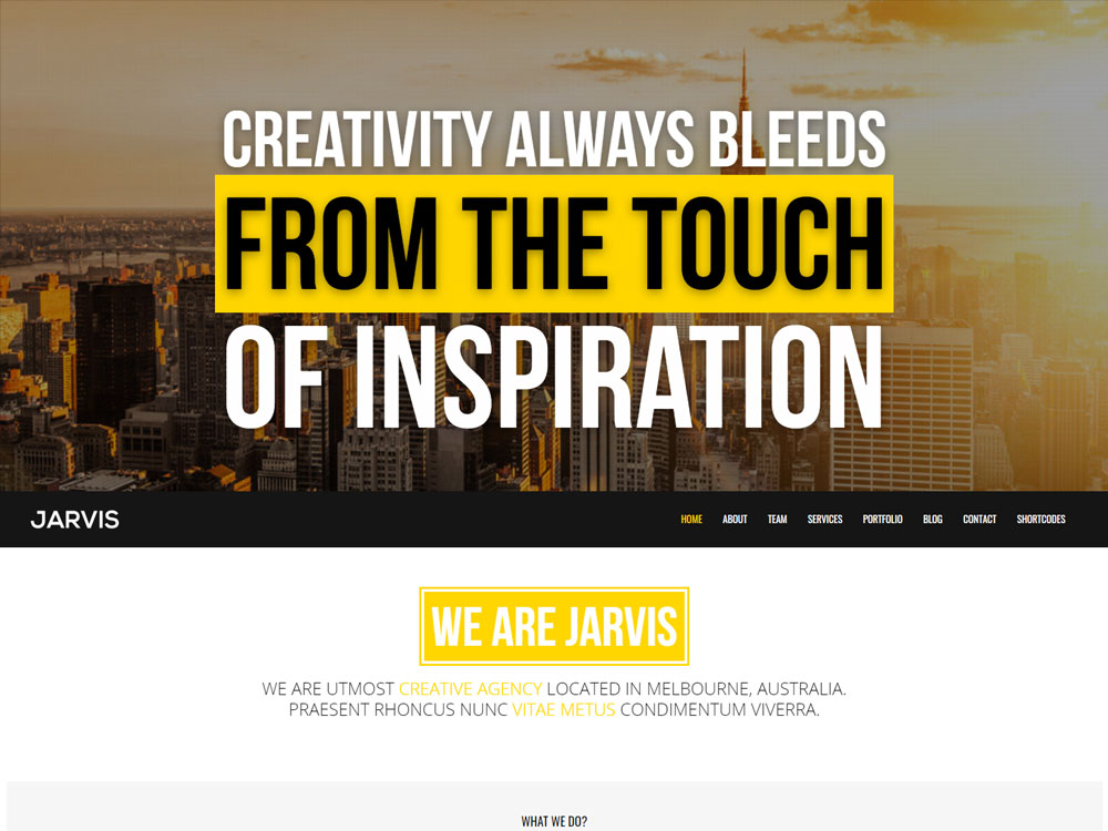 19+ Best WordPress Themes Ready to Build Professional